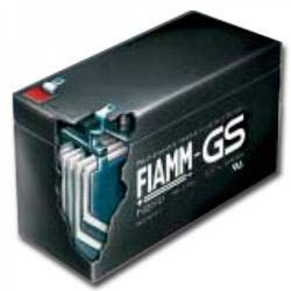 Fiamm MonoLite 12SLA50 Batterieledning PB 12Volt 50Ah